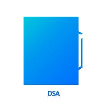动态加速网络  DSA